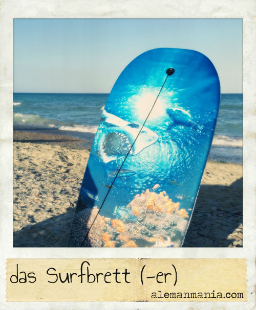 Das Surfbrett