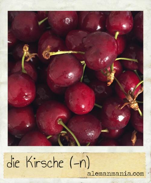 Die Kirsche. Eine rote und süße Frucht